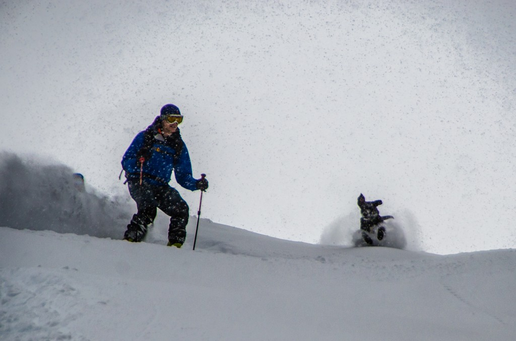 Allie follows her owner, Dana, down a mellow powder run in Swift Creek.