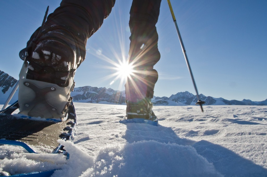 Antarctica_2013-6043