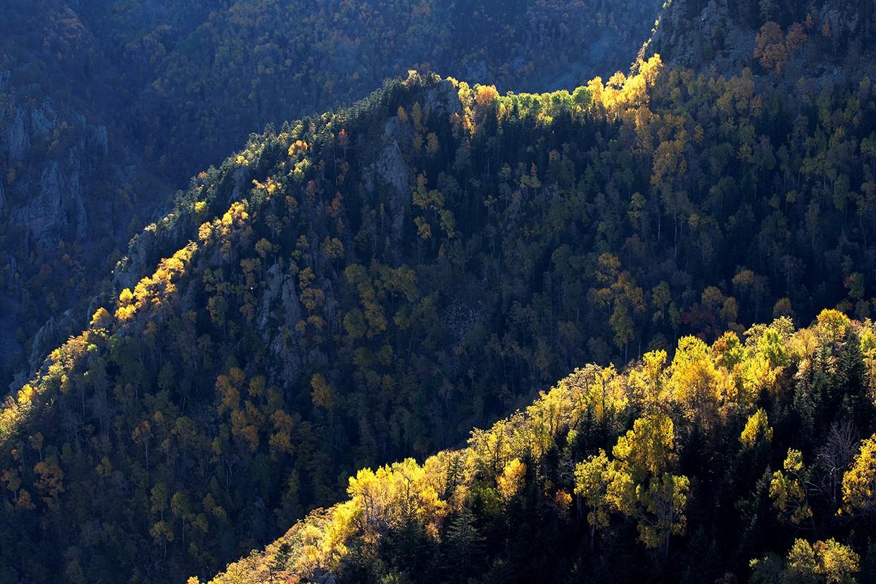 cat vinton - pyrenees - 10
