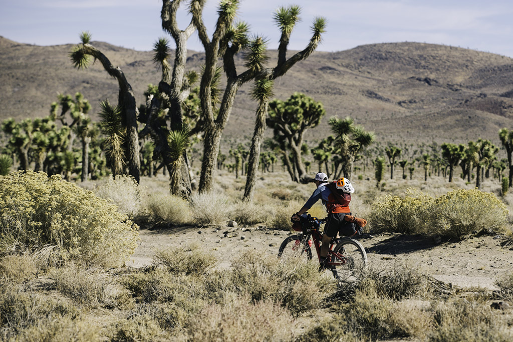 bikepacking death valley solo