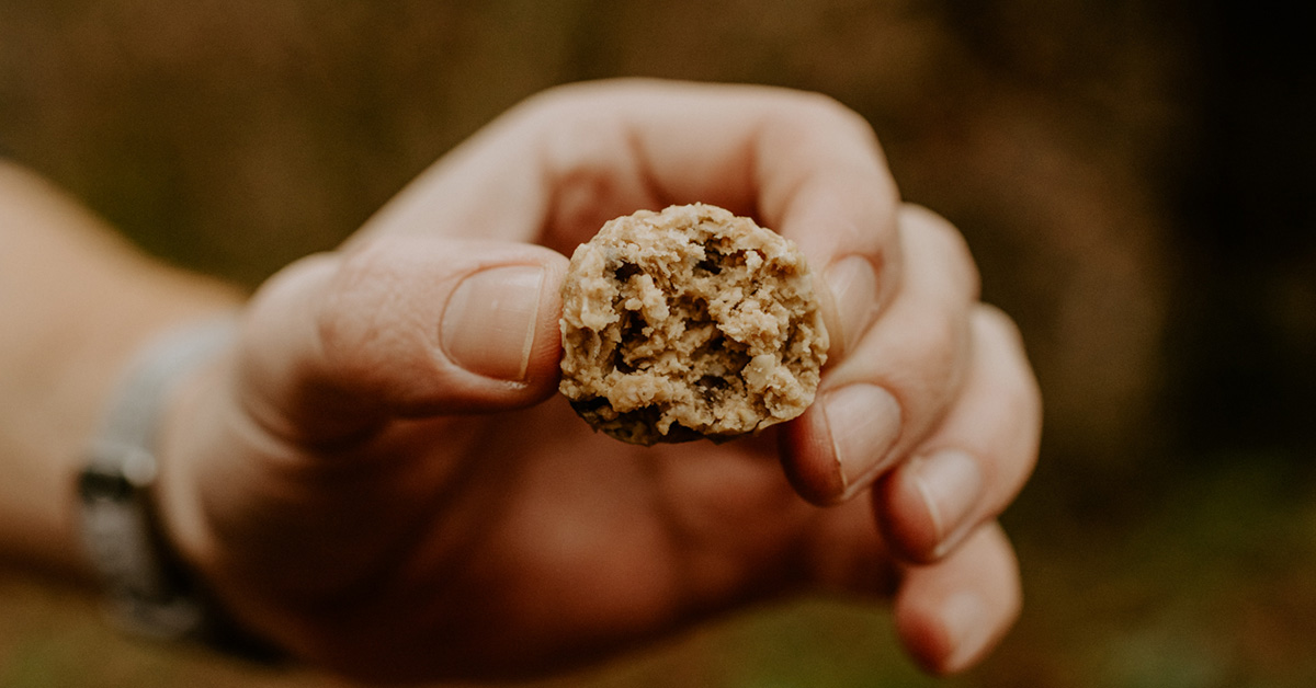 Vegetarian Camping Recipe Oat Power Balls2