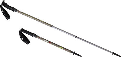 Talus™ TR-3 Trekking Poles, , large